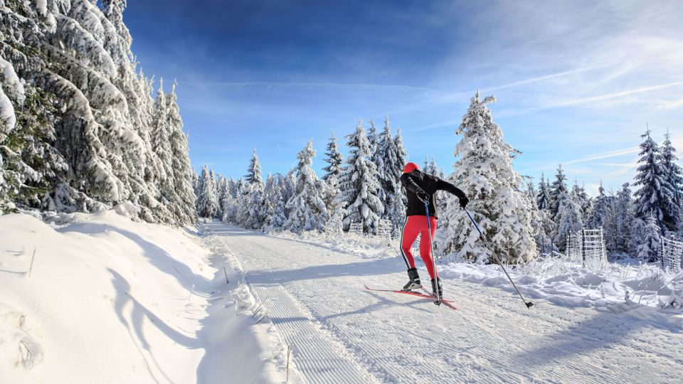 Picture: Skiing, snowboarding and cross-country skiing